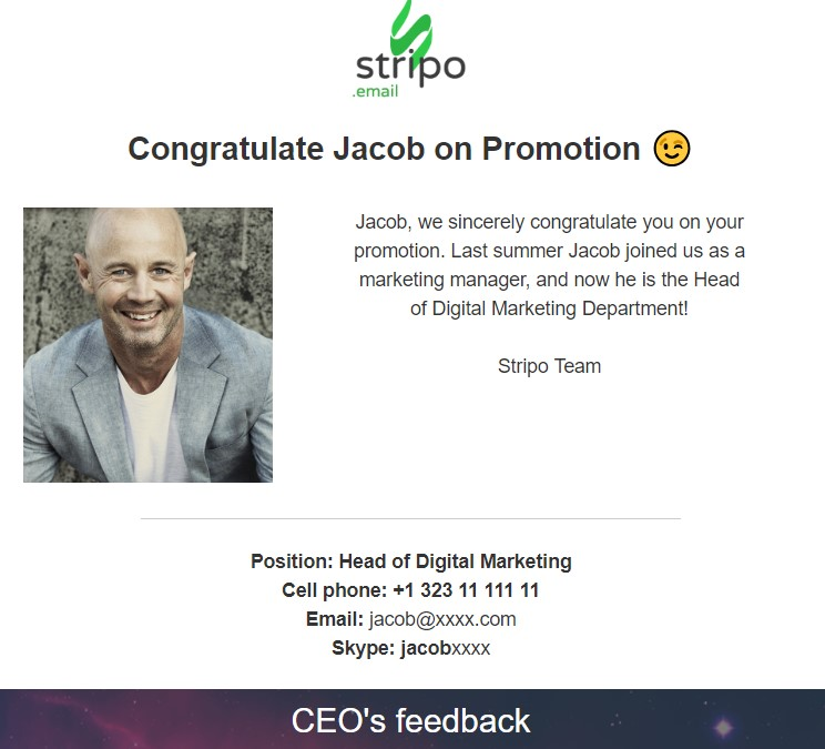 Stripo-Internal-Newsletters-Promotion